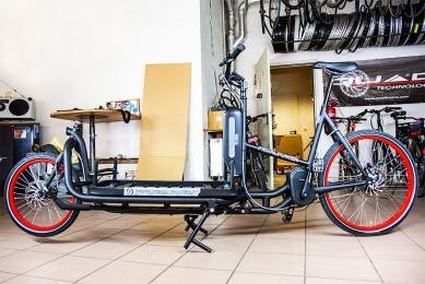 Prototyp des eHarry