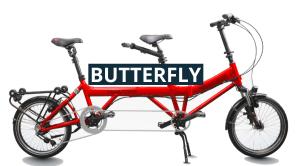 butterfly - Kopie (2)