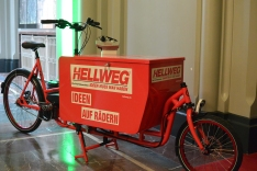 Pedalpower eHarry brose Crmo special edition in CrMo Stahl Load 100kg