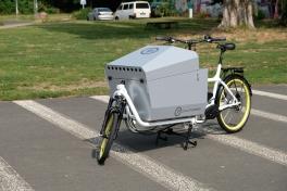 eHarry mit Transportbox GIGLIO RAGAZZI